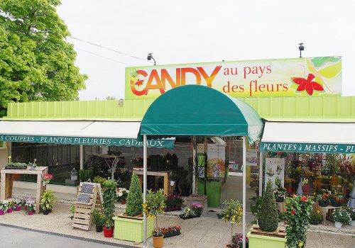 Candy au Pays des Fleurs